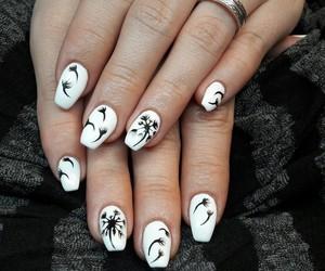 black, white, and dandelion image