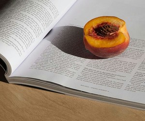 peach, book, and fruit image