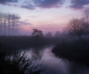 nature, sky, and purple image