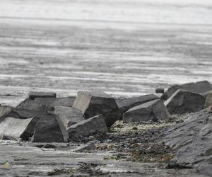 beach, nature, and rocks image