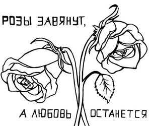 quotes, roses, and russian image