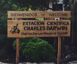 charles darwin, ecuador, and sign image