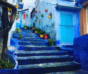 blue, flowers, and Houses image