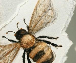 art and bee image