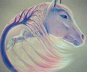 horse, drawing, and beautiful image