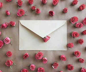 love, rose, and Letter image
