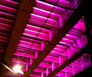 overhead, pink, and pink lights image