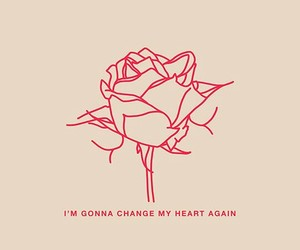 rose, flowers, and heart image