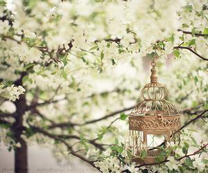 flowers, vintage, and tree image