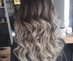 brown, grey, and hair image