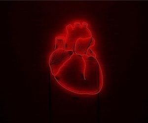 heart, red, and neon image