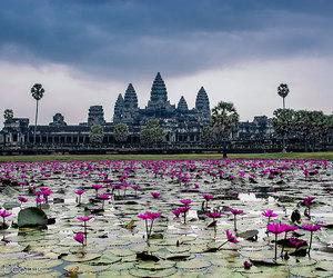 Cambodia, angkor wat, and beautiful image