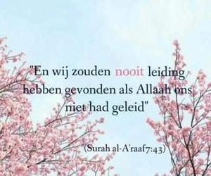 allah, beautiful, and Koran image