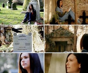the vampire diaries, delena, and tvd image
