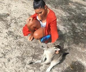 animals, girl, and kangourou image