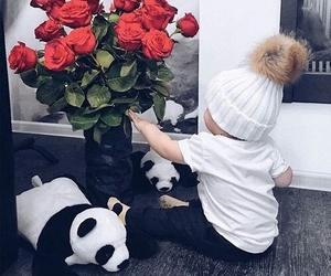 baby, panda, and rose image