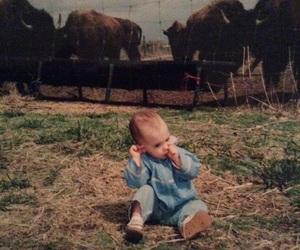 baby, brave, and buffalo image