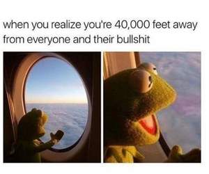 meme, kermit, and funny image
