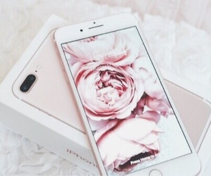 iphone, refreshing, and rose image