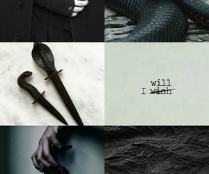 hp fandom, slytherin aesthetic, and tumbl tumblr post image