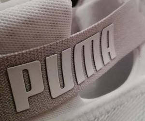 puma, white, and shiny image