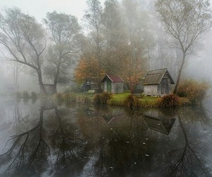 nature, house, and tree image