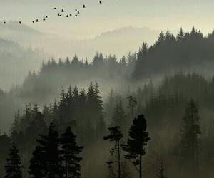 Image by leniwiec lubi placki