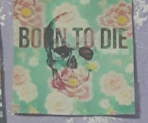 born to die image