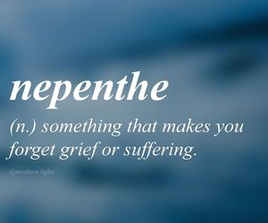 forget, grief, and suffering image