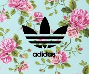 addidas and wallpaper image