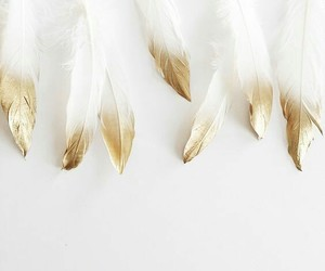 aesthetic, comics, and feathers image