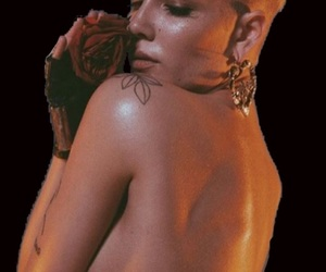 overlay, transparent, and halsey image