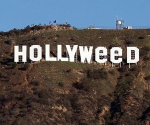 hollywood, hollyweed, and alternative image