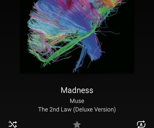 madness, music, and muse image