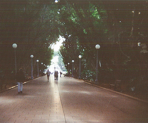 35mm, Hyde Park, and lomography image