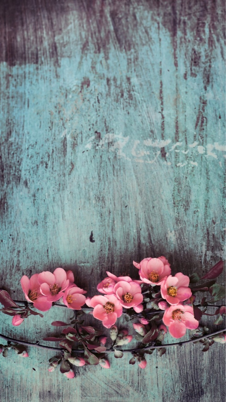 Flowers Wallpapers Iphone Pink Uploaded By Sofi West