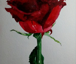 watercolor, rose, and red image