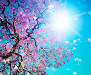 tree, sun, and flowers image