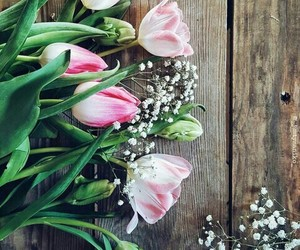 april, pink, and flowers image