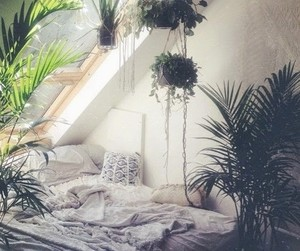 bedroom, plants, and bed image