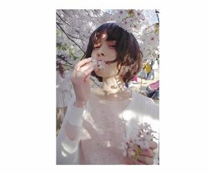 cherry, girl, and japan image