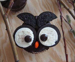 oreo and owl image
