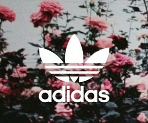 adidas, flowers, and sports image