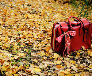red, bag, and autumn image