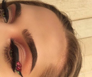 makeup, rose, and eyebrows image