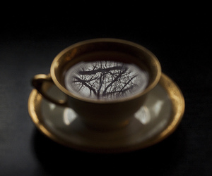 love, books, and coffee image