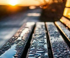 rain, bench, and memories image