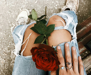 fashion, rose, and love image