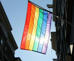 lgbt, flag, and gay image