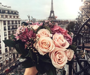 flowers, paris, and rose image